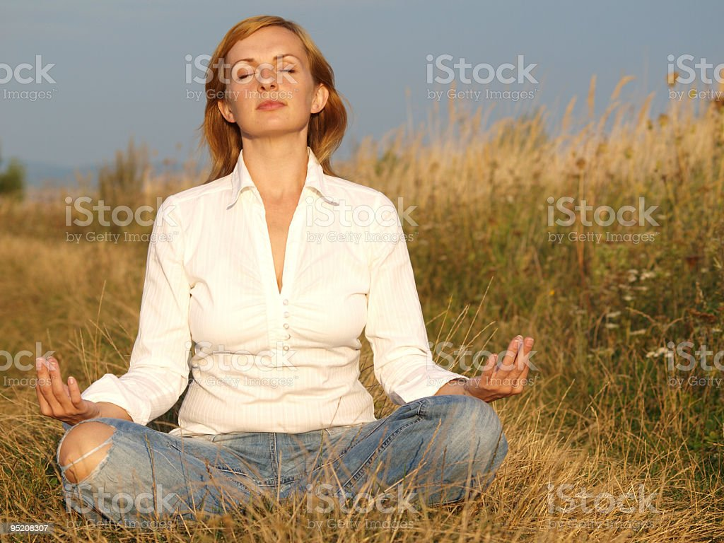 Calming in meadow royalty-free stock photo