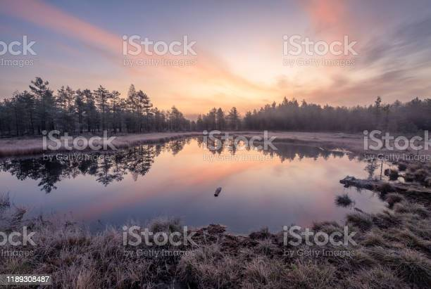 Photo of Calmness and cold autumn morning landscape with sunrise, beautiful reflections and peaceful lake in Finland