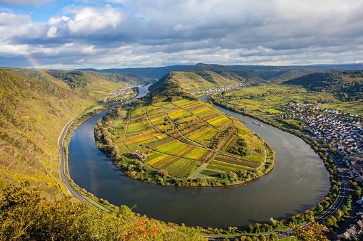 Calmont Moselle loopLandscape in golden autumn colors and the village Bremm