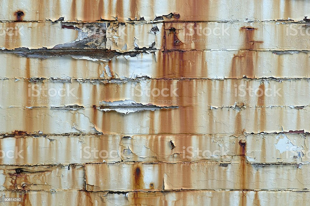 Calypso - Detail royalty-free stock photo