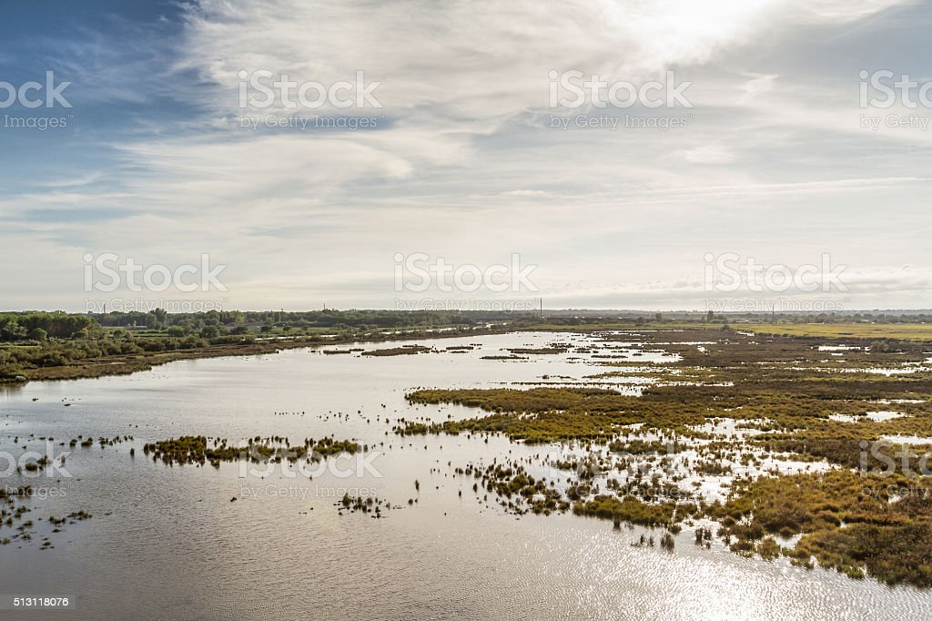 Camargue - France stock photo