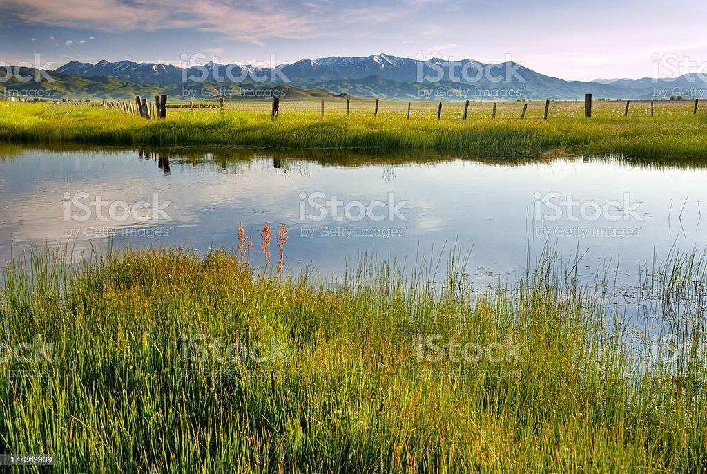 Camas Prairie morning creek and fence fields stock photo