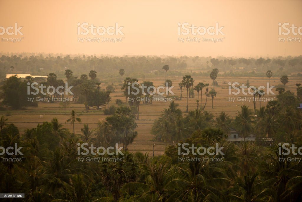 Cambodian landscape stock photo
