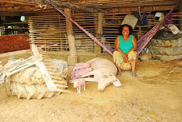 Cambodian Woman Laughing with Pigs stock photo