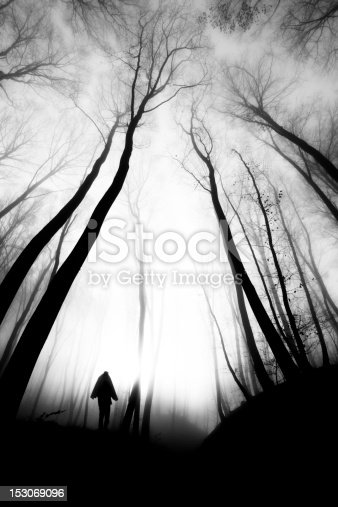 Spooky scene in the fogy forest with strange humanoid silhuette apparition. Black and white, grainy photo with very high contrast for the mood.