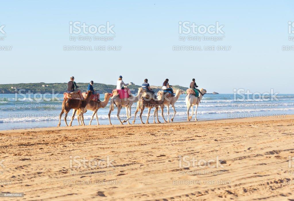 Kameel caravan op strand. Essaouira. Marokko foto