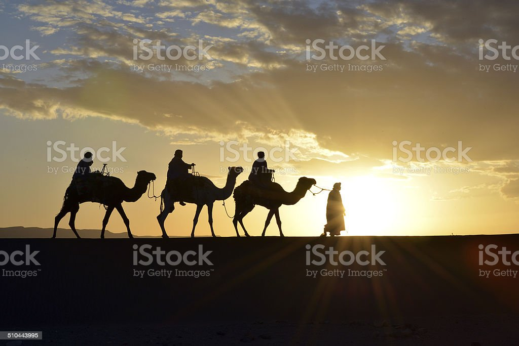 Camel caravan in Morocco stock photo