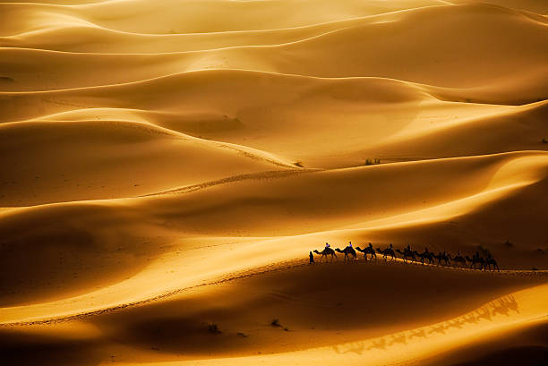 camel caravan in the middle of the desert - desolated stock pictures, royalty-free photos & images