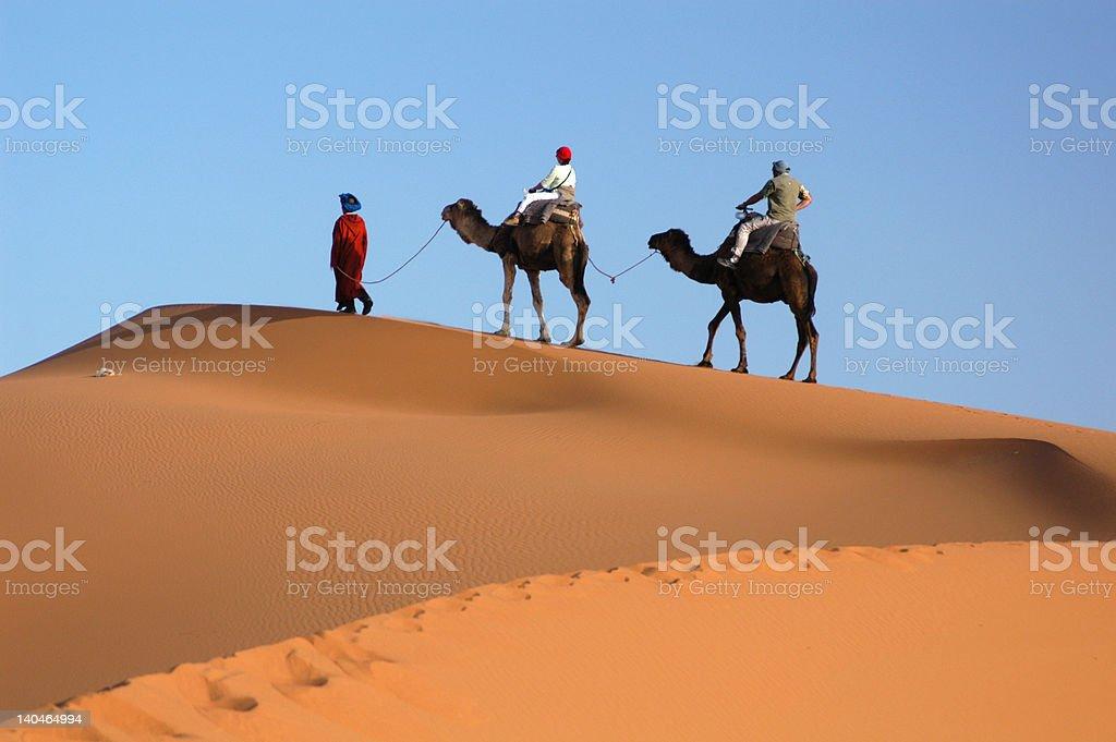 Camel Caravan in the Sahara Desert royalty-free stock photo