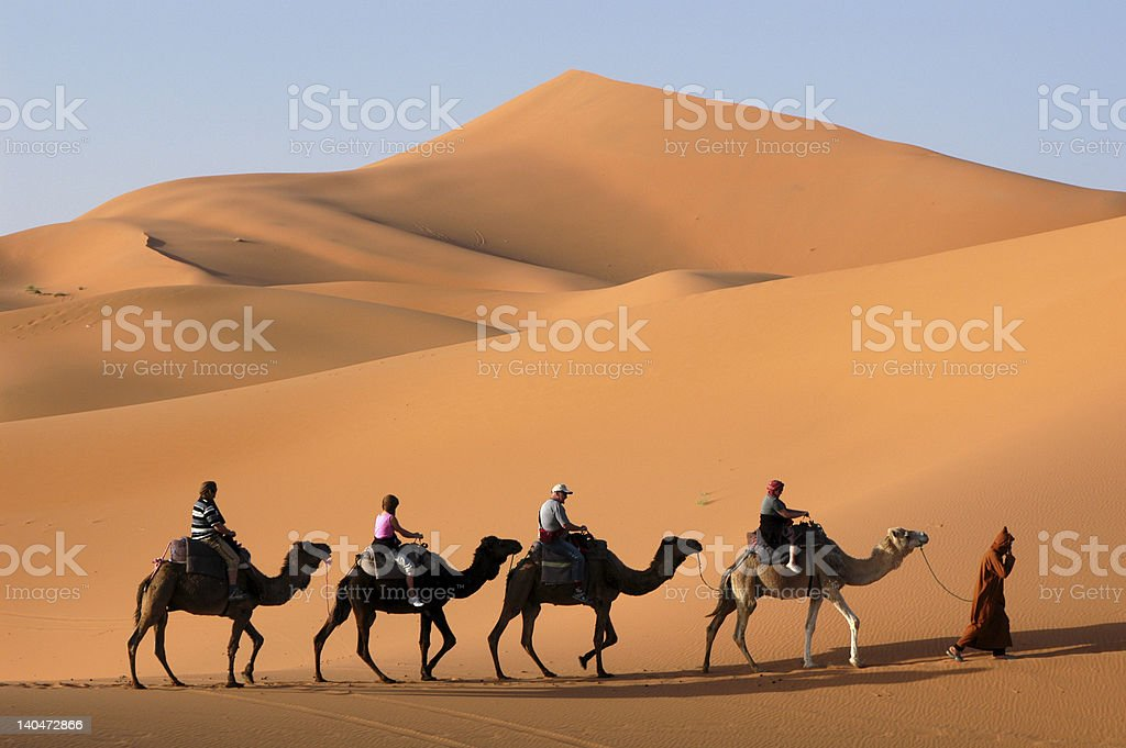 Camel Caravan in the Sahara Desert stock photo