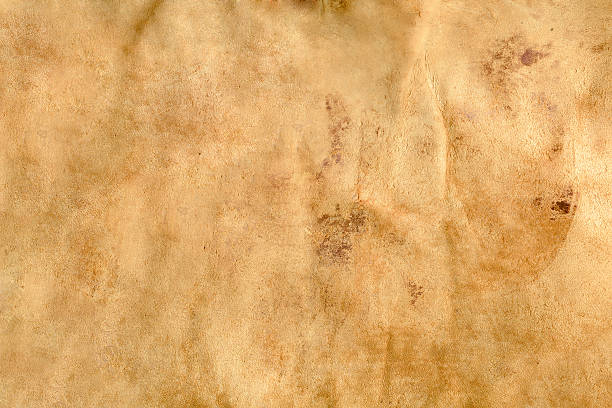Camel colored leather texture Textured background image made of a weathered old leather chair cowhide stock pictures, royalty-free photos & images