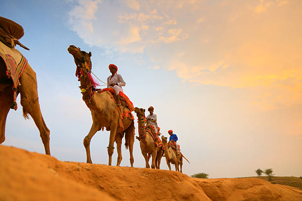 camel drivers in the desert stock photo