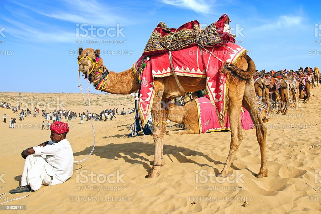 Camel Festival in Bikaner, India stock photo