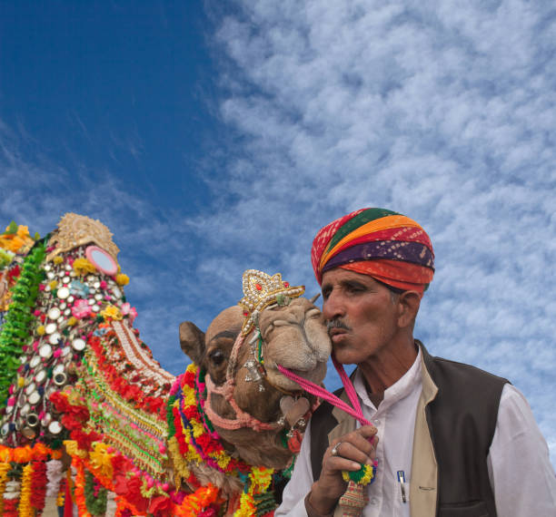 Camel festival in Bikaner, Rajasthan, India stock photo