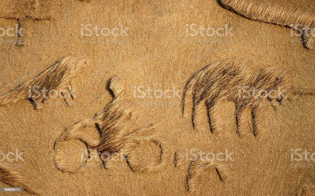Camel fur royalty-free stock photo
