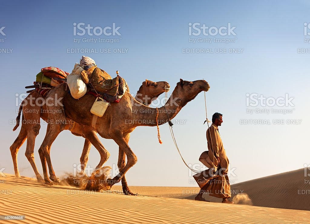 Camel man leads his camels across the Thar desert stock photo