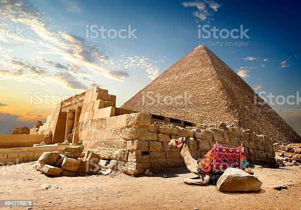 Camel rests near ruins of entrance to pyramid
