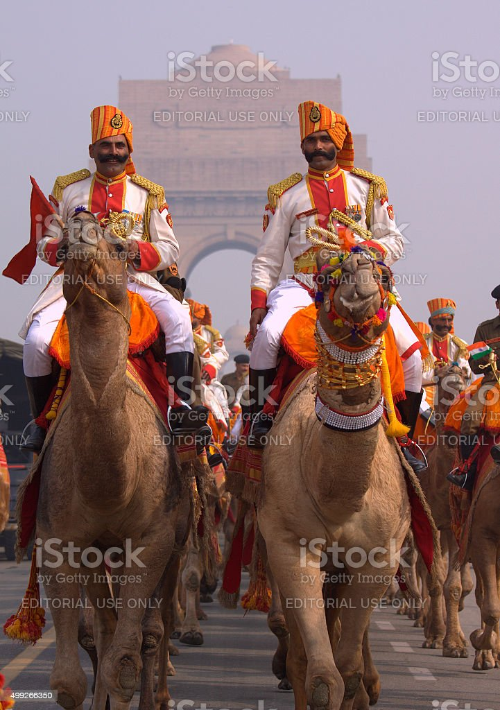 Camel Regiment stock photo