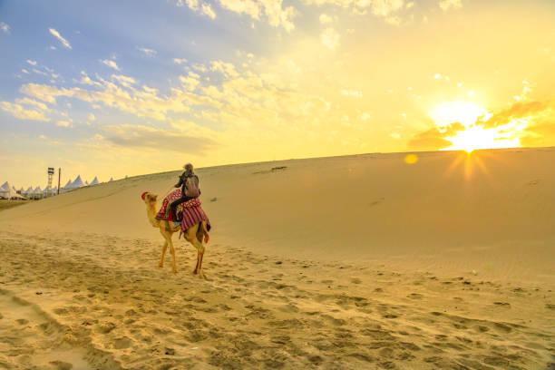 paseo en camello en safari por el desierto - qatar fotografías e imágenes de stock