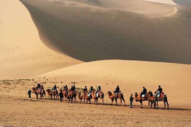 Camel ride in Gobi Desert Tourists ride camels at Mingsha Shan (Singing Sand Dunes) in Dunhuang, China silk road stock pictures, royalty-free photos & images