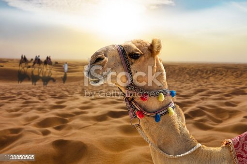 883177796istockphoto Camel ride in the desert at sunset with a smiling camel head 1138850565
