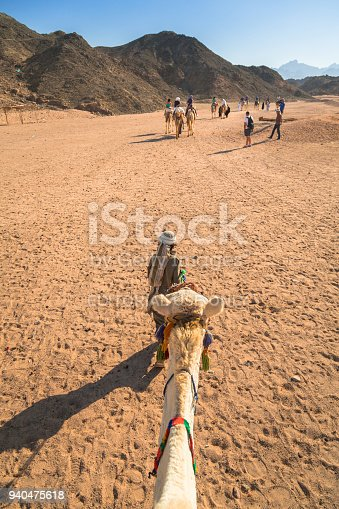 883177796istockphoto Camel ride on the desert near Hurghada, Egypt. 940475618