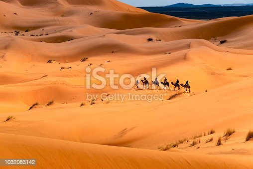 A guide and several tourists walking a camel through the desert.