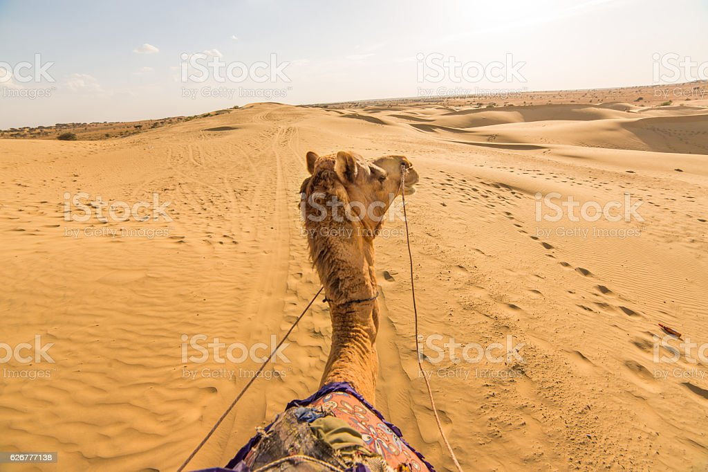 Camel rider view in Thar desert, Rajasthan, India stock photo