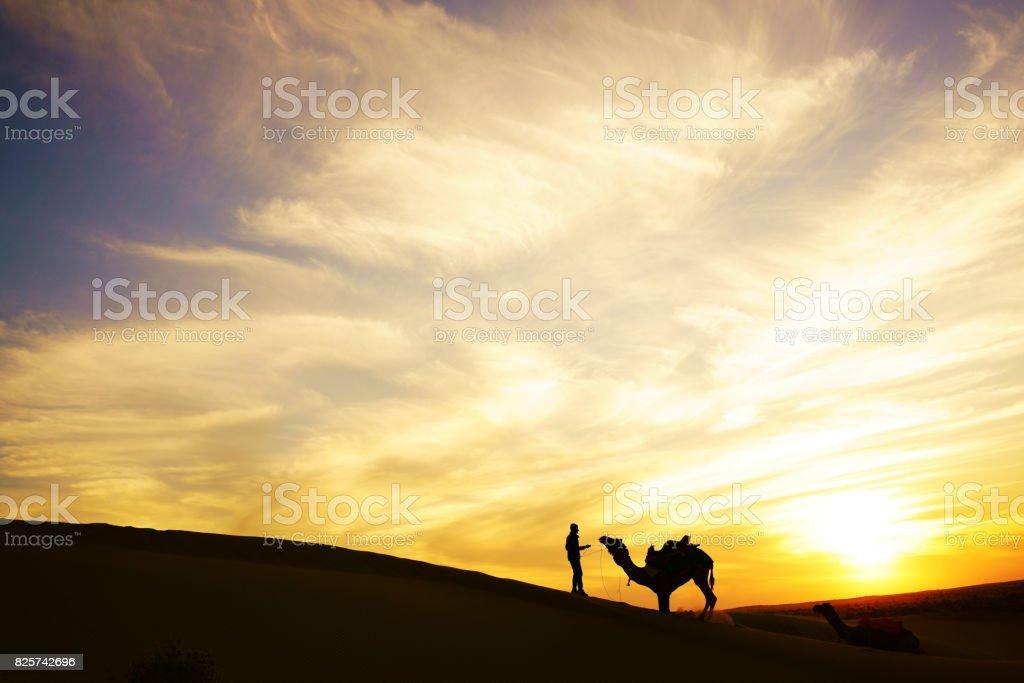 Camel rider view in Thar desert, Rajasthan, India stock photo