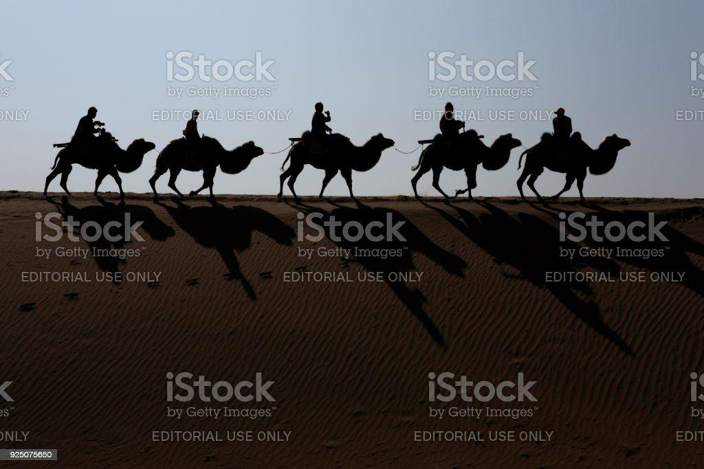 Camel riding in the Shapotou district of Tengger Desert stock photo
