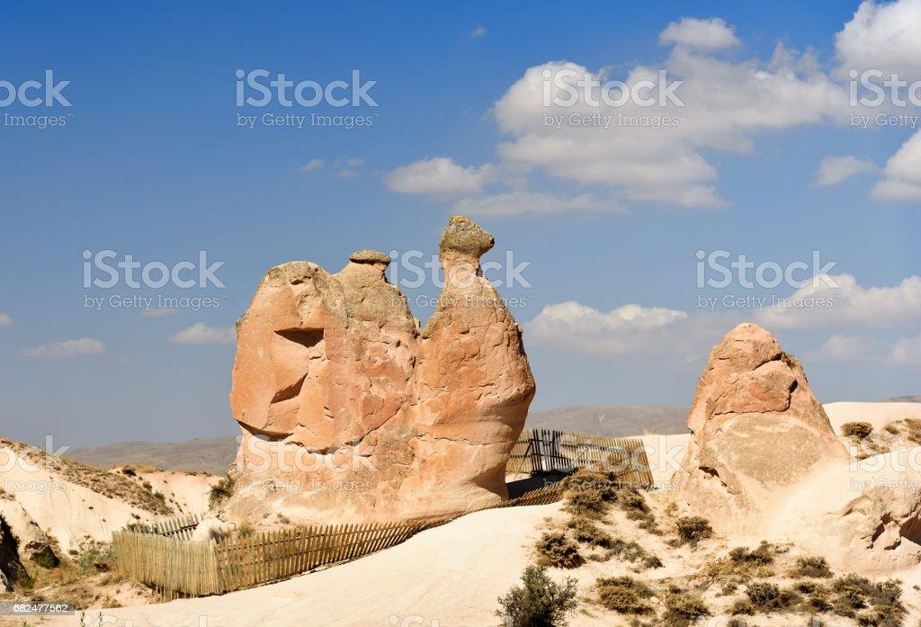 Camel Rock im Devrent-Tal in Cappadocia. Turkei Lizenzfreies stock-foto