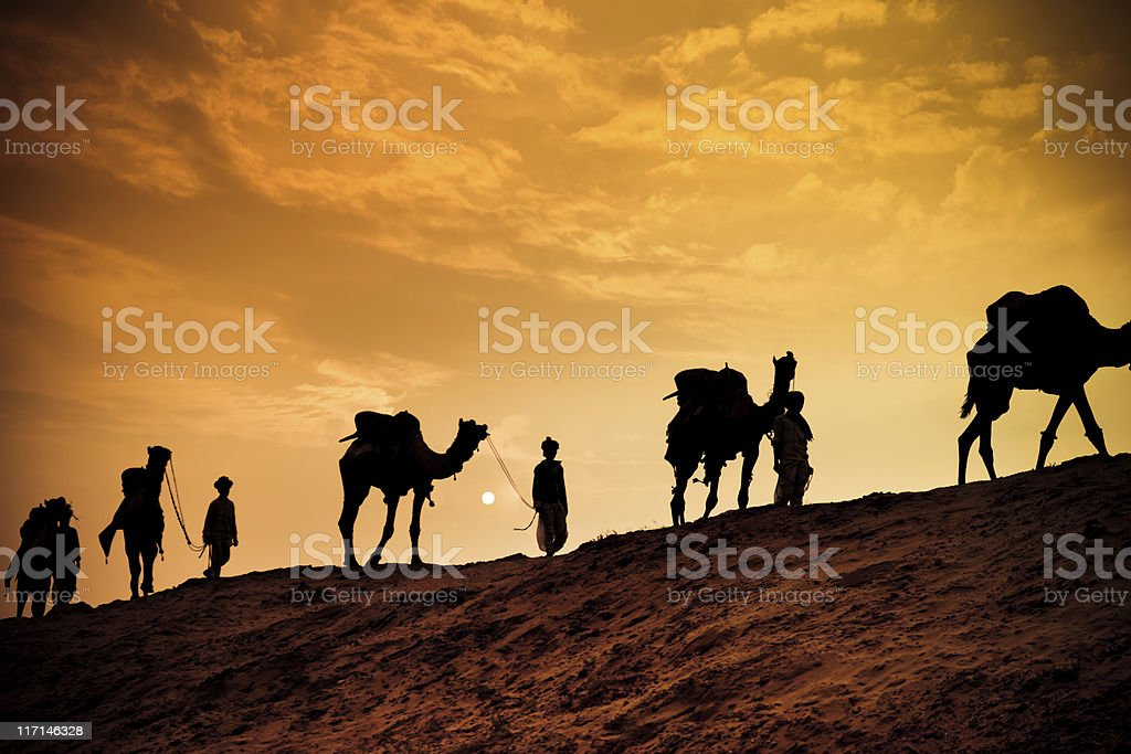 Camel Safari in the Desert stock photo