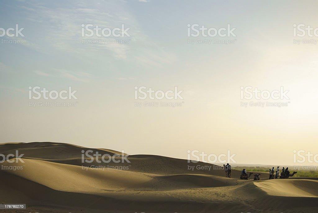 Camel Safari royalty-free stock photo