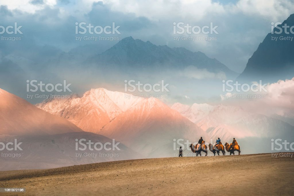 Camel safari Ride caravan in Hunder desert , Nubra valley , Leh Ladakh India Camel safari Ride caravan in Hunder desert , Nubra valley , Leh Ladakh India Adventure Stock Photo