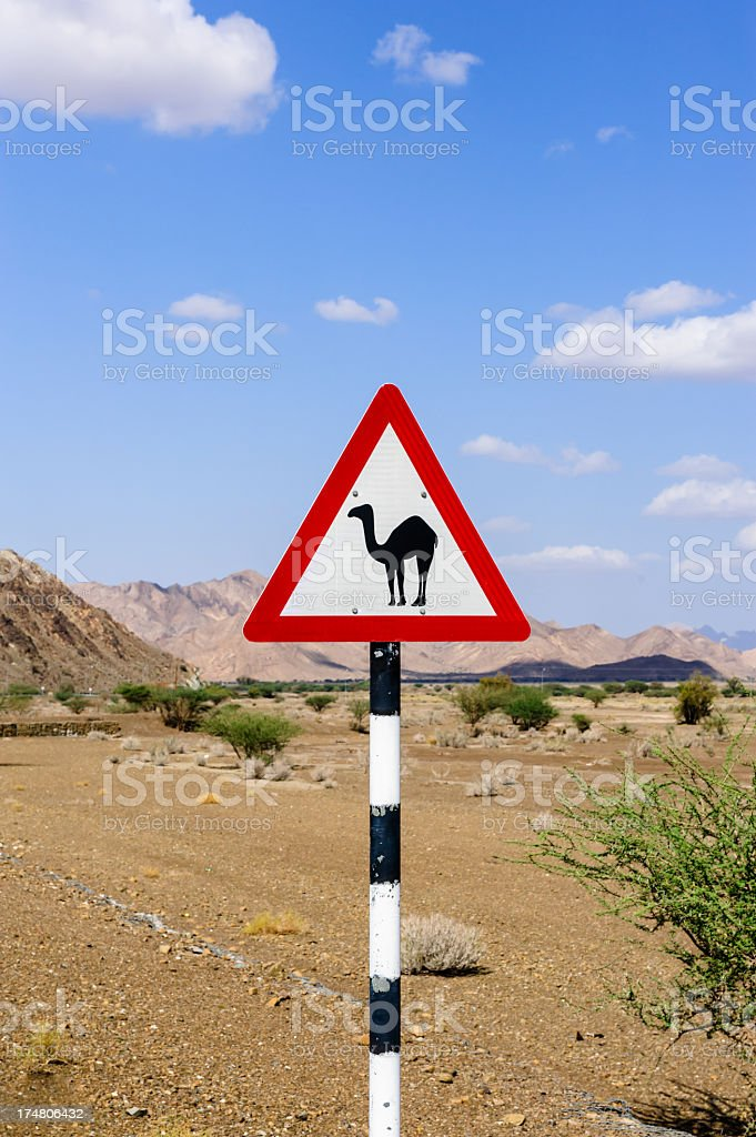 Camel sign royalty-free stock photo