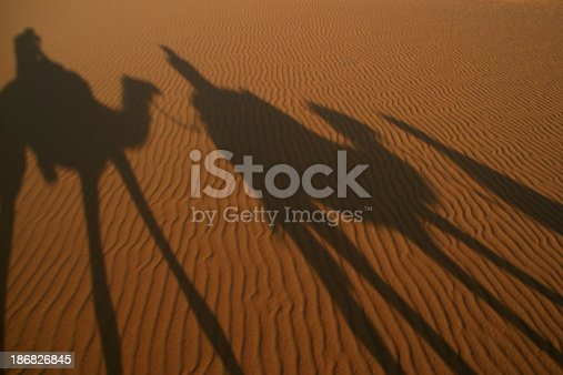 istock Camel silhouettes 186826845