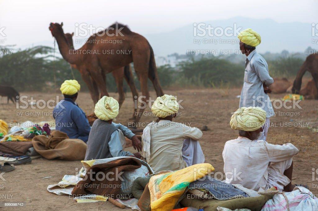 camel traders in pushkar camel fair stock photo