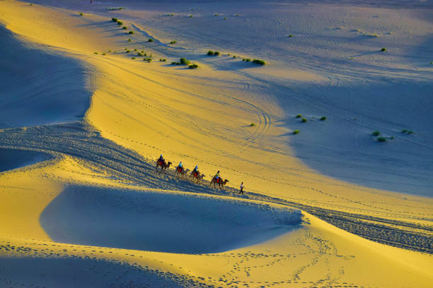 A Camel Train in Desert Landscape. A camel train is traveling in the desert. Created in Dunhuang, China. 07/07/2018 silk road stock pictures, royalty-free photos & images