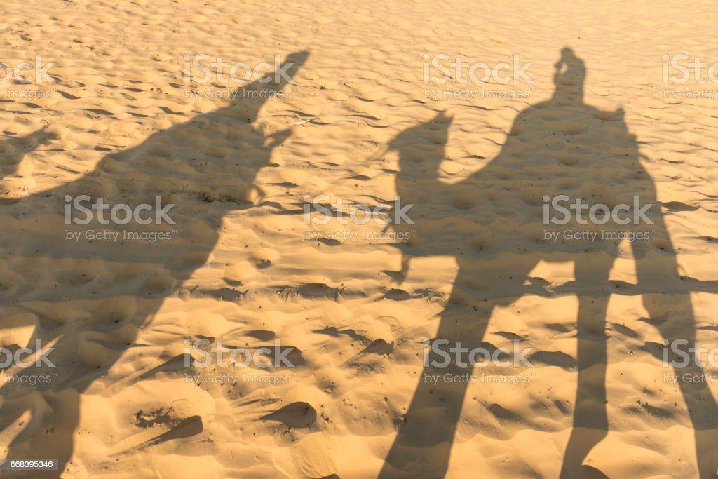 Camel train in desert stock photo