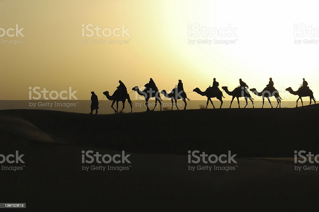 A camel train silhouette against the sunset stock photo