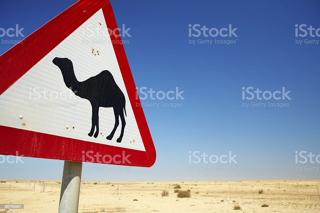 Camel warning sign royalty-free stock photo