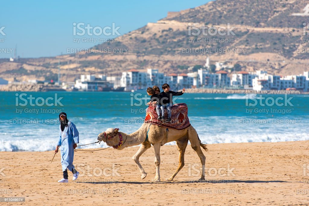 Camel with tourists in Agadir on January 03. 2018 in Morocco stock photo