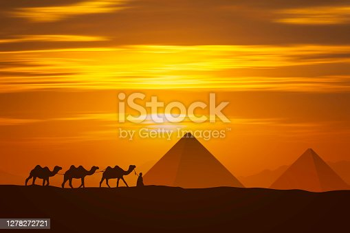cameleer and camel and pyramid at sunset