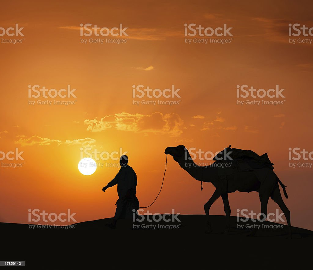 Cameleer (camel driver) with camels in dunes of Thar desert royalty-free stock photo