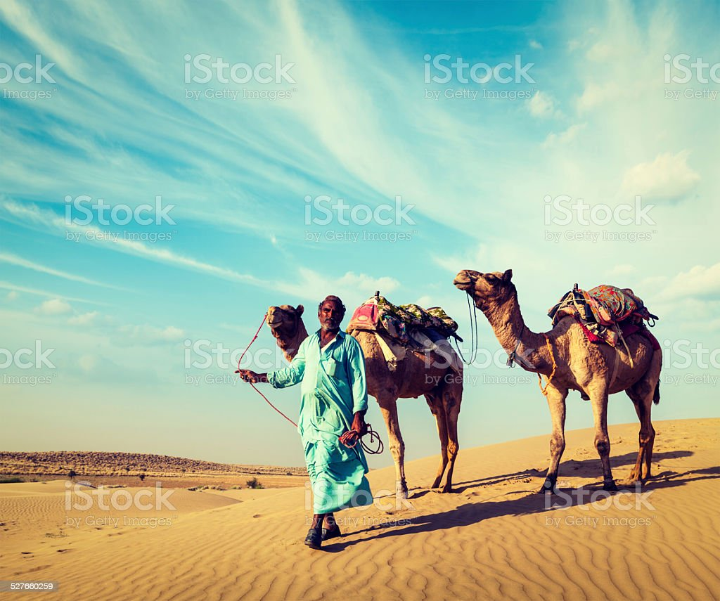 Cameleer with camels in dunes of Thar desert. Raj stock photo
