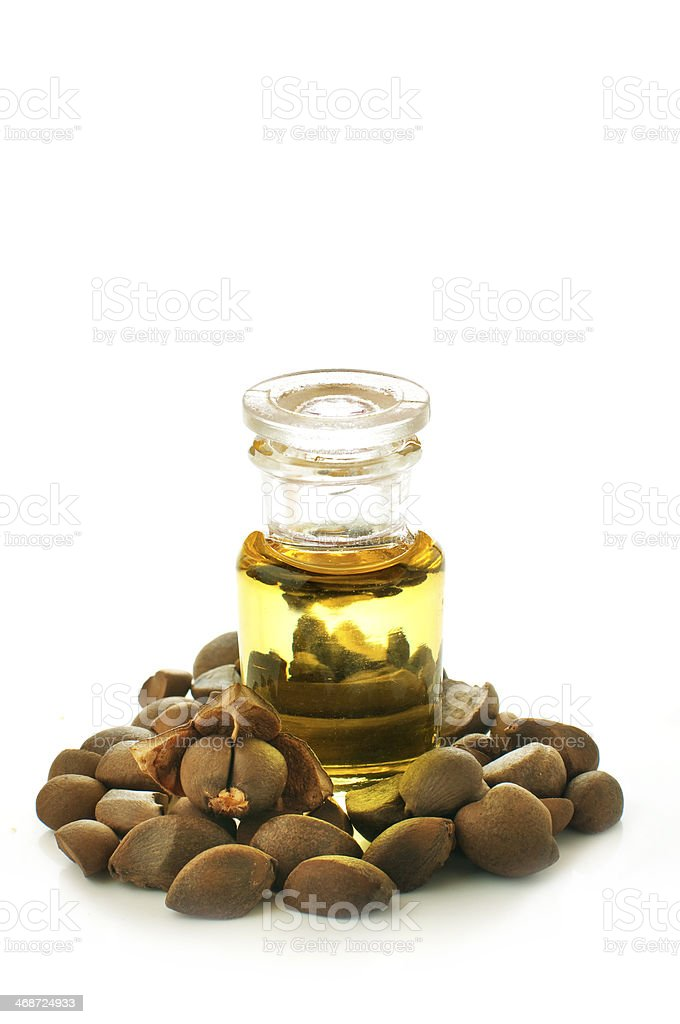 camellia oil and nuts stock photo
