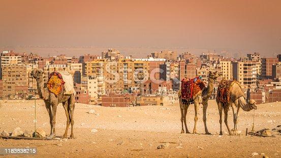 Egypt, Pyramid, Giza, Cityscape, Kheops Pyramid