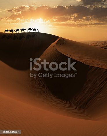 Arab man leading a camels caravan at sunset on a giant sand dune in the Empty Quarter desert of Abu Dhabi