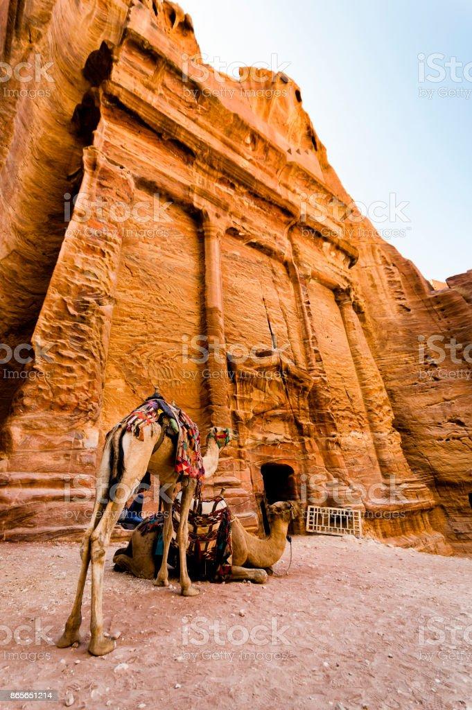 Develer Petra stok fotoğrafı