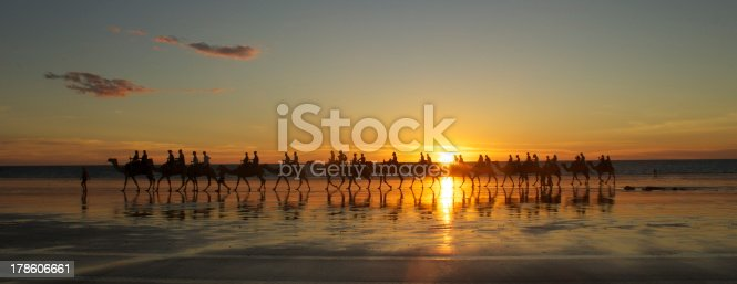 istock Camels on Cable Beach 178606661